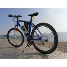 Elektro-Fahrrad, ATV Cross Country Riesen