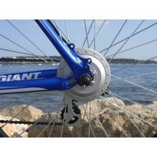 bicicleta eléctrica, ATV campo a través gigante