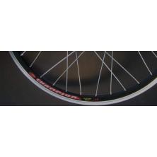 RIM 28 pollici bicicletta elettrica